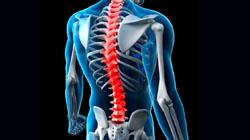 Centro de referência de coluna e dor