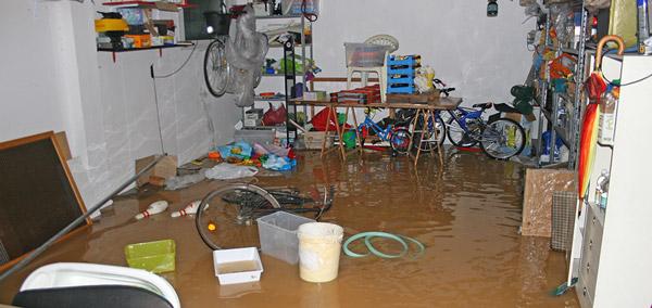 Enchentes e Leptospirose