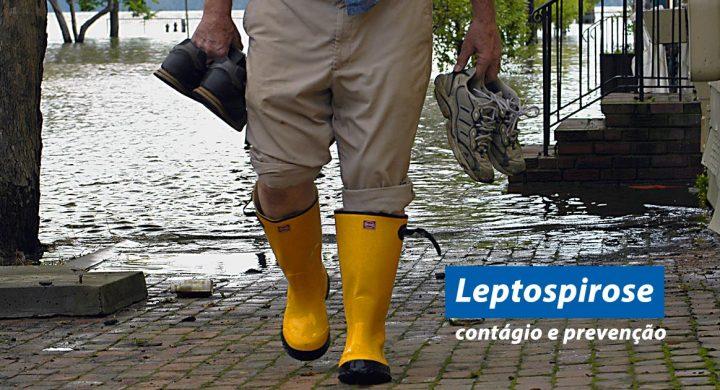 Leptospirose: contágio e prevenção