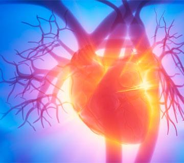cardiologia leforte