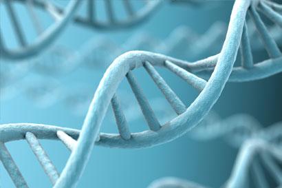 Teste genético pode indicar risco aumentado para câncer de próstata
