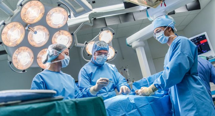 Transplante de órgãos - indicações, cuidados com paciente e atuação do Grupo Leforte no ato de salvar vidas